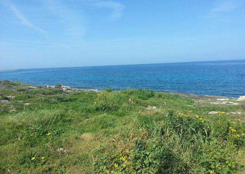 Продается земельный участок в Каршияке на Северном Кипре.