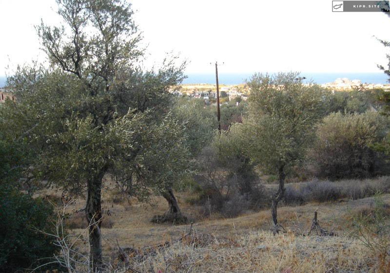 участок земли в пять тысяч квадратных метров в Лапте на Северном Кипре.