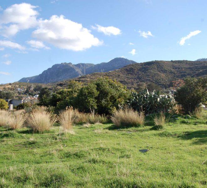 Земельный участок площадью в 3 донума на Северном Кипре